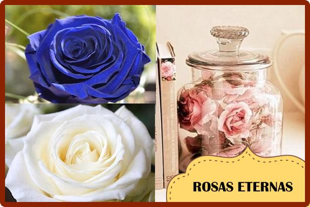 Comprar una Rosa Eterna: Regalos Vintage