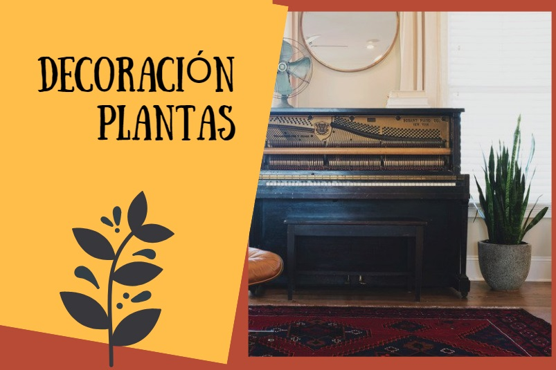 plantas interior decoracion vintage