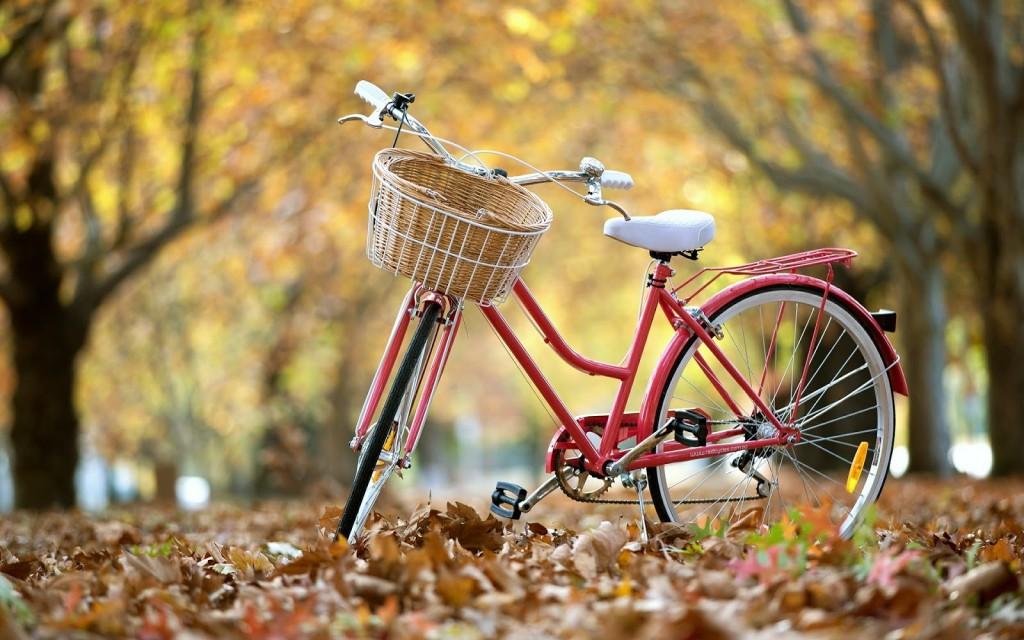 Bicicletas vintage! Dónde las puedes encontrar, paseos famosos